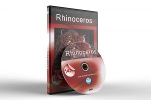 Curso de Rhinoceros completo 3D1